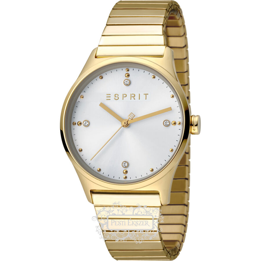 Esprit VinRose Silver Gold Polish női óra ES1L032E0075